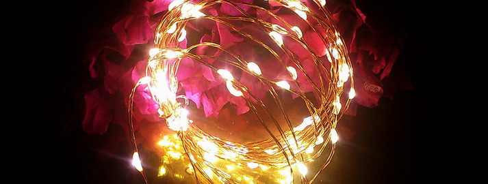 Qualizzi Starry and String Lights